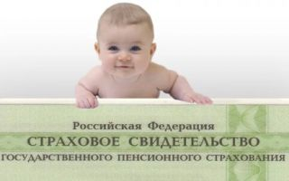 Как оформить СНИЛС для новорожденного малыша — порядок и особенности